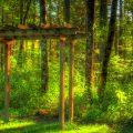 Still Meadow Retreat