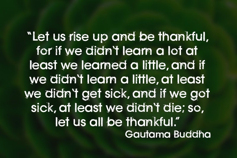 gratitude quote by Gautama Buddha