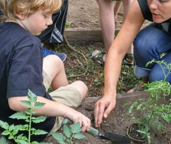 Love, Knowledge and Action: Inspiring Environmental Stewardship